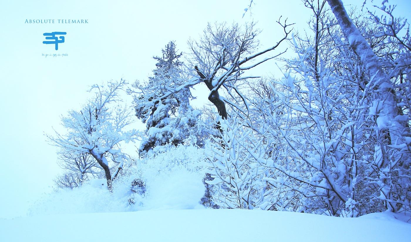 neige dans face